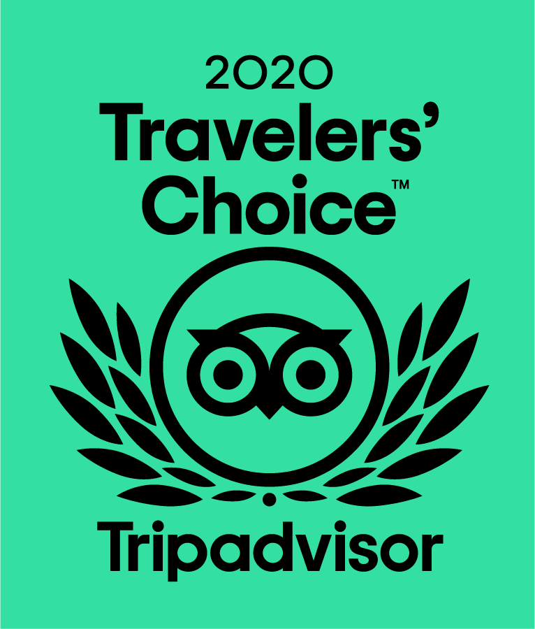 tripadvisor travel choice